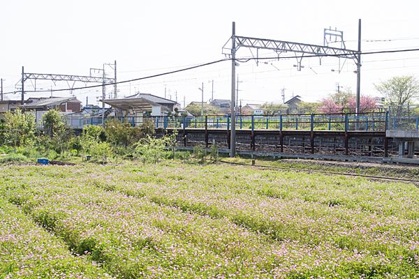 養老鉄道2-10