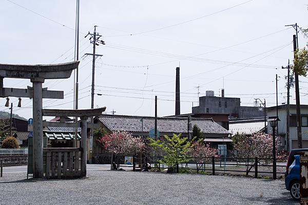 三輪神社-11