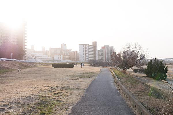 矢田川-6