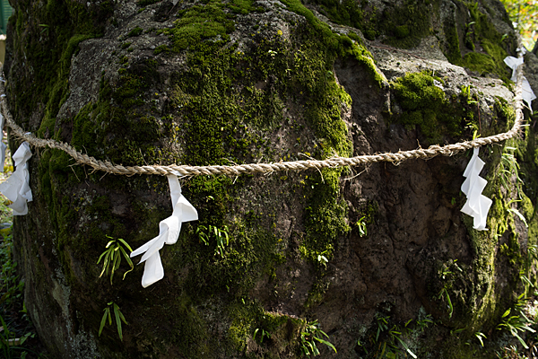日吉神社-7