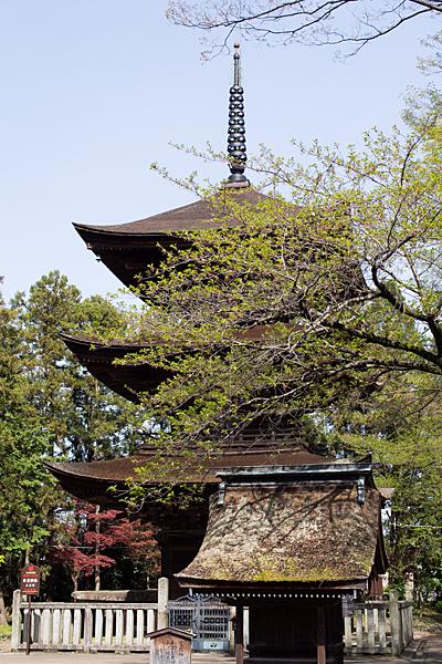 日吉神社-9