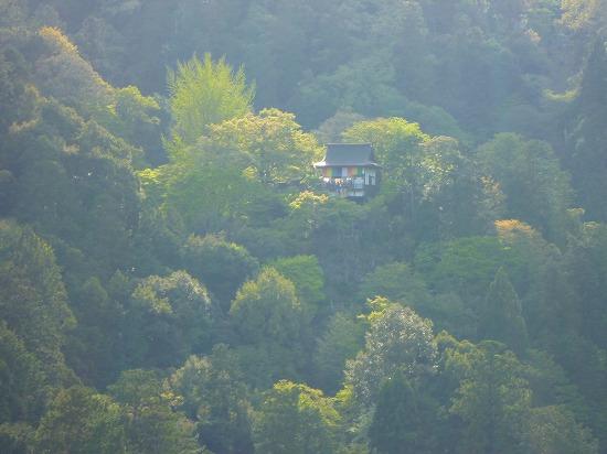 15,4,18 嵐山 (7)