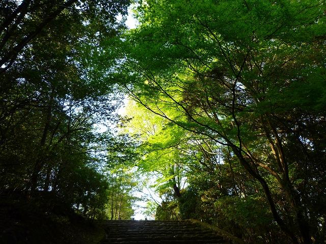 15,4,18 嵐山 (8)