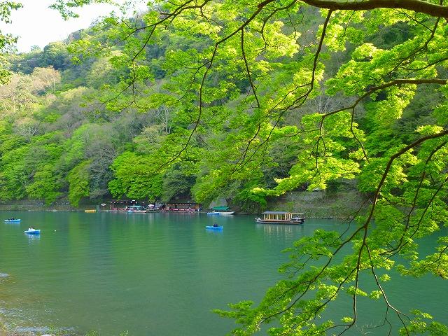 15,4,18 嵐山 (13)