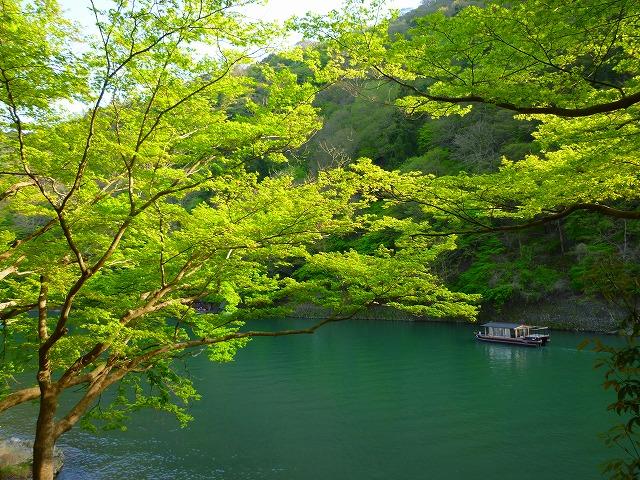 15,4,18 嵐山 (14)
