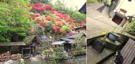 kurokawa2015-03.jpg