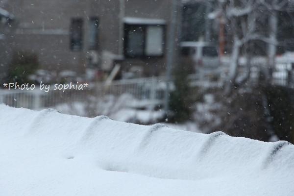 暴風雪警報