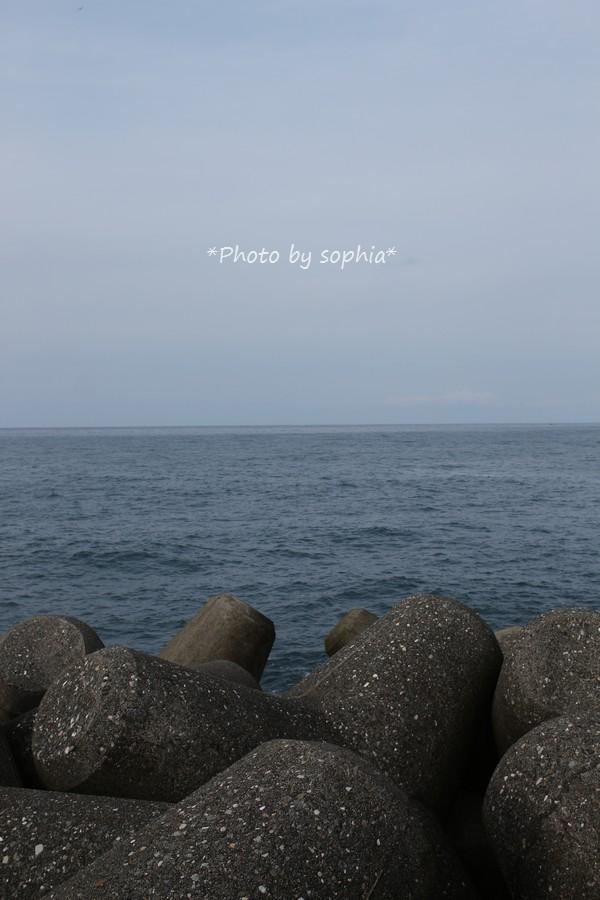 テトラポットの海