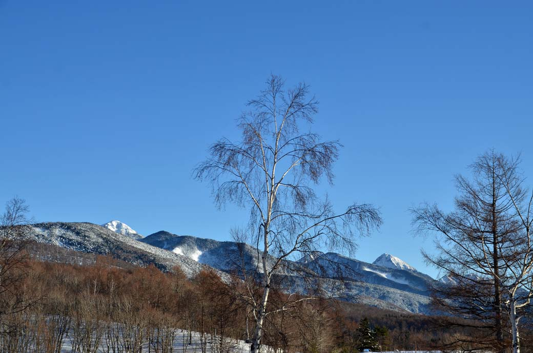 雪をかぶった赤岳阿弥陀岳