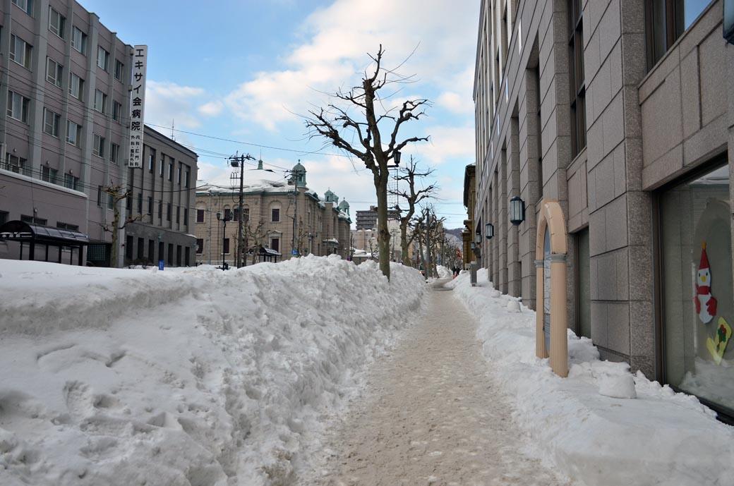小樽雪景色D70_5578