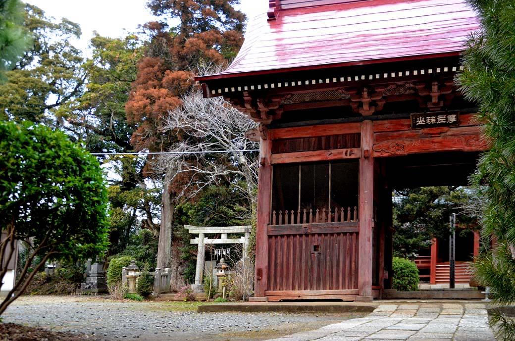 D70_6848松虫寺