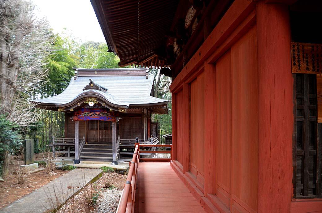 D70_6859松虫寺