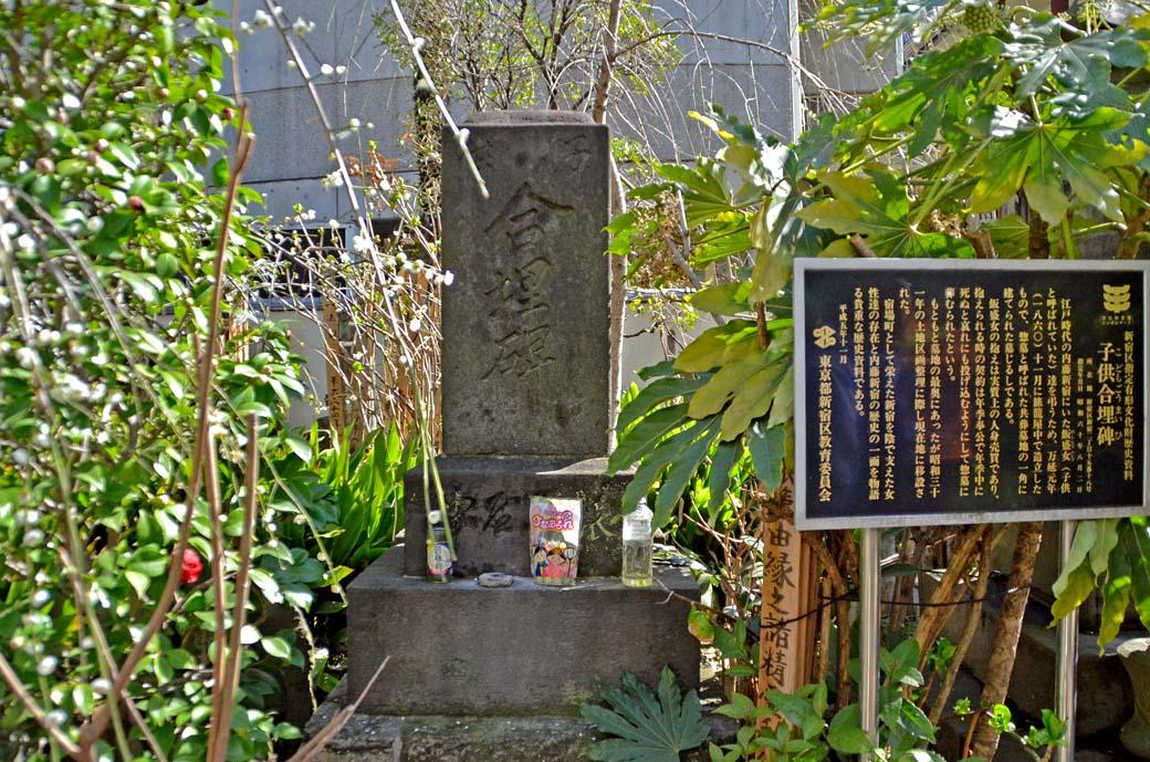 D70_7912内藤新宿