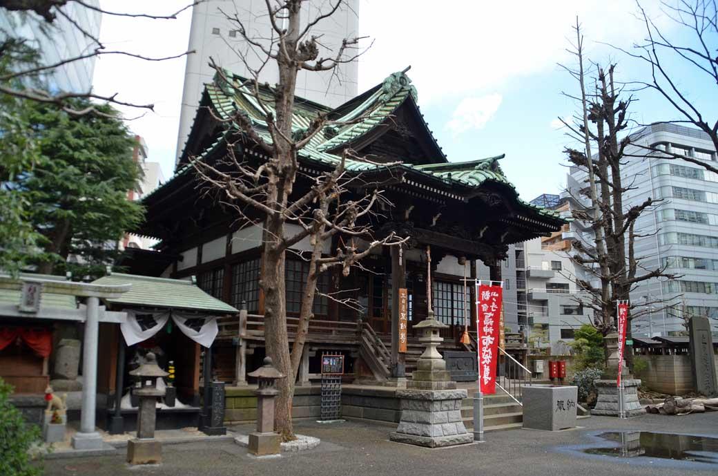 D70_7948内藤新宿