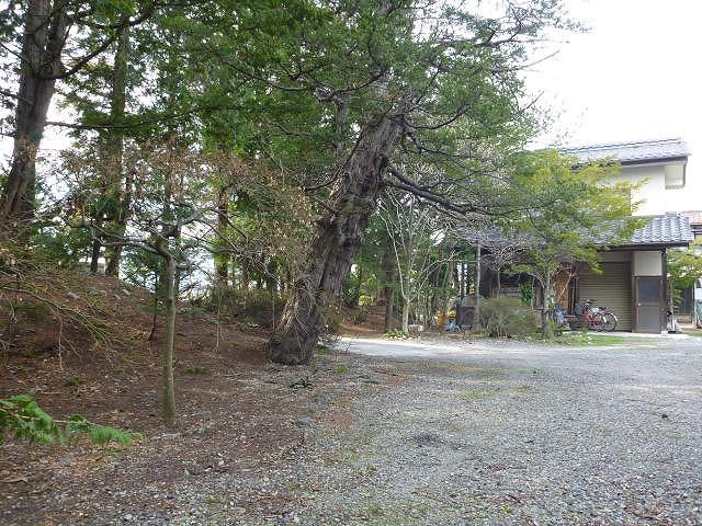 yosinomachihoriyasiki (5)