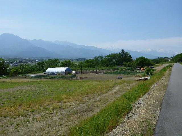 uyamasi7 (4)