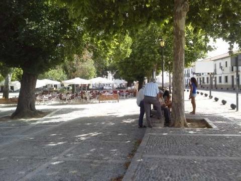 12 Plaza Ruedo Alameda