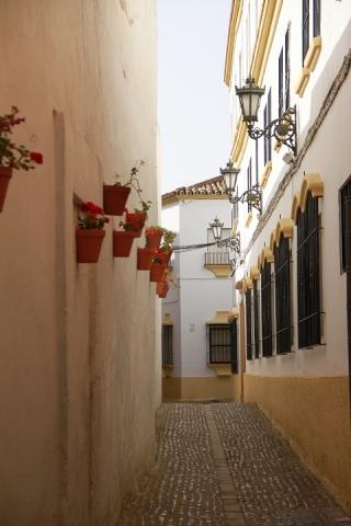 21 Calle Manuel Montero
