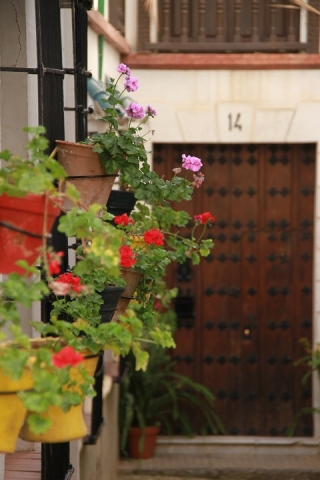 32 Calle Manuel Montero
