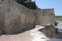 20140718-597 Antequera ixy