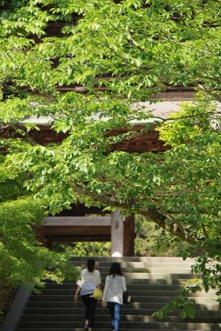 501 円覚寺