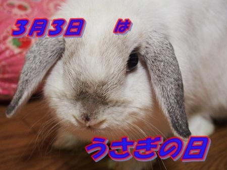 P9132454.jpg