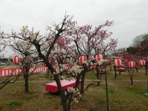 20150307_01梅小路公園