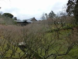 20150308_07東福寺1