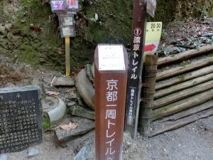 20150308_10深草トレイル