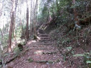 20150321_11登山道