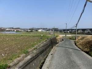 20150322_56田園風景