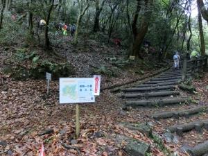 20150405_03枚岡公園ハイキング道