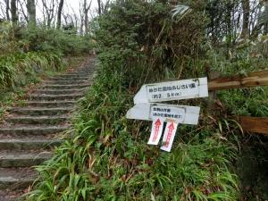 20150405_10登山道