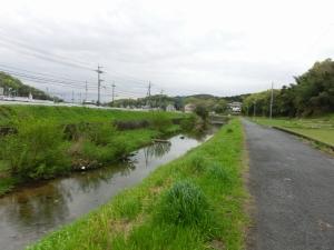 20150417_01富雄川