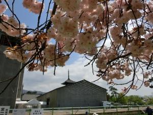 20150417_22興福寺