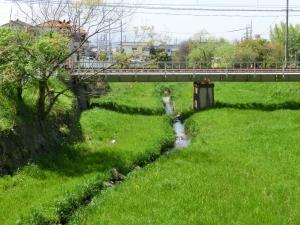 20150417_37岩井川