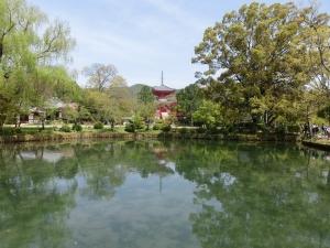 20150418_07大覚寺大澤池