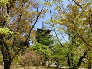 20150418_15仁和寺