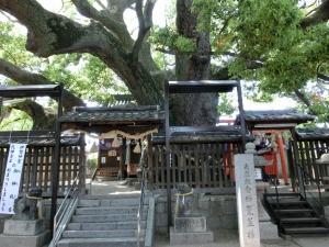 20150425_17三嶋神社