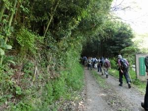 20150426_05登山道