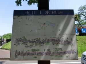 20150502_05玉川上水緑道
