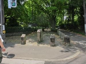 20150502_07神代植物公園