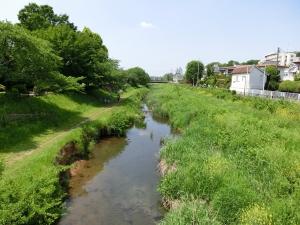 20150502_16野川の川沿い