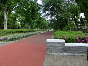 20150503_02小金井公園