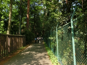 20150503_04小金井公園