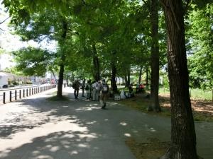 20150503_11東村山中央公園