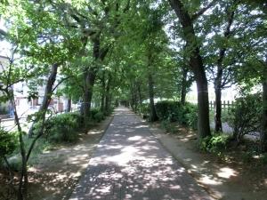 20150503_14薬用植物公園