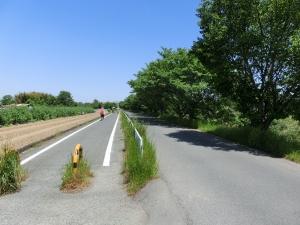 20150505_13大和自転車道