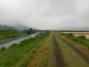 20150516_25麦畑