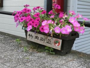 20150524_11竹内街道プランター
